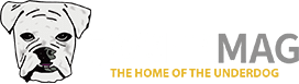 Joker Mag - the home of the underdog OFFICIAL LOGO